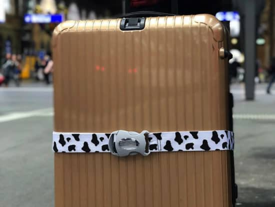 close up of luggage straps on a suitcase